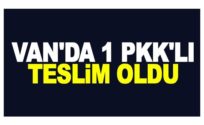 PKK'lı bir kişi, ikna çalışmaları sonucu teslim oldu