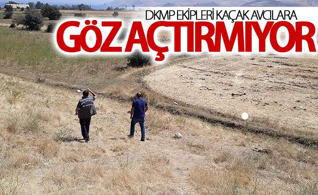 Dkmp ekipleri kaçak avcılara göz açtırmıyor