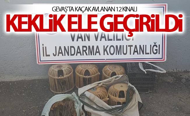 Kaçak keklik avlayan 2 kişiye toplam 9 bin 308 TL idari para cezası talep edilecek
