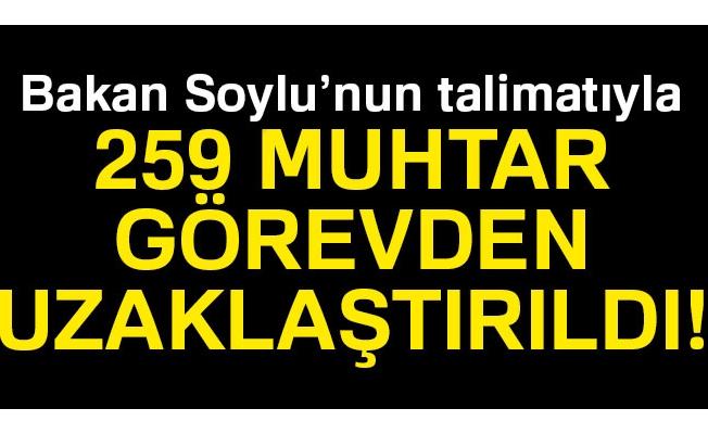 259 muhtar Bakan Soylu'nun talimatıyla görevden uzaklaştırıldı