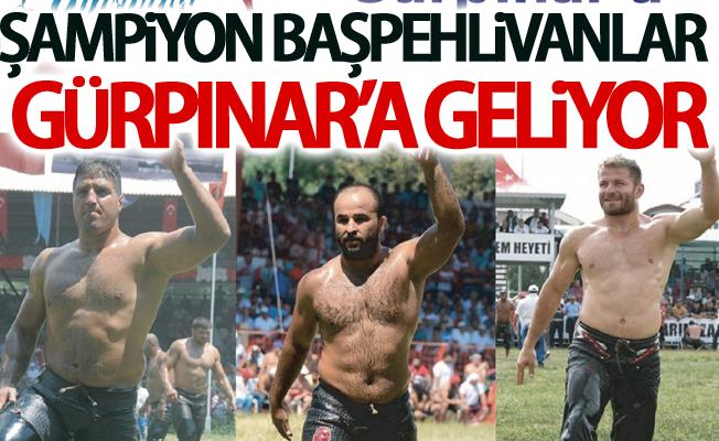 Şampiyon başpehlivanlar Gürpınar'a geliyor