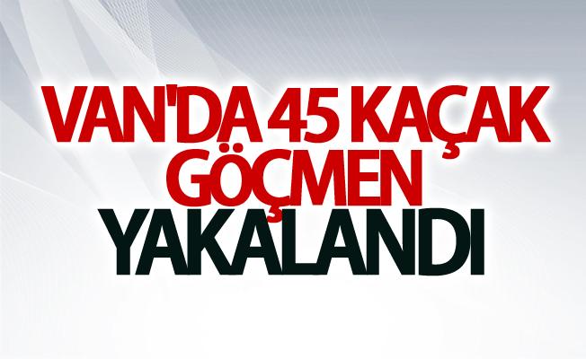 Van'da 45 kaçak göçmen yakalandı