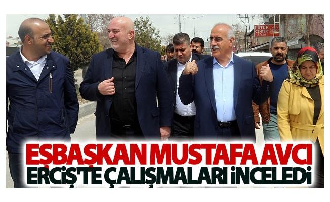 Eşbaşkan Mustafa Avcı Erciş'te çalışmaları inceledi