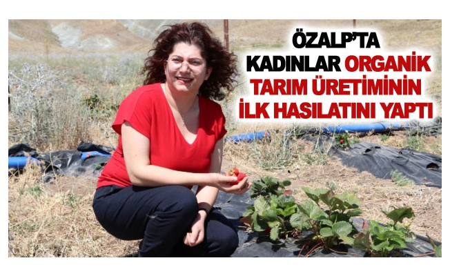 Özalp'ta kadınlar organik tarım üretiminin ilk hasılatını yaptı