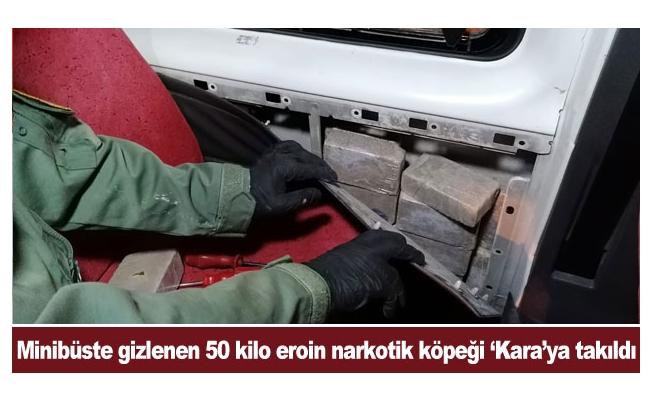 Minibüste gizlenen 50 kilo eroin narkotik köpeği 'Kara'ya takıldı
