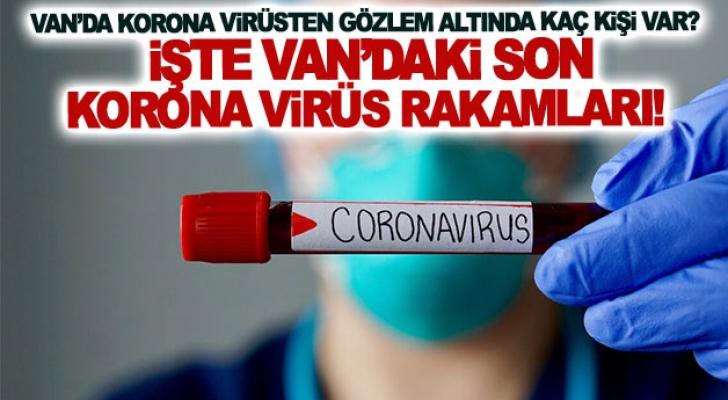 Van'daki son korona virüs rakamları!