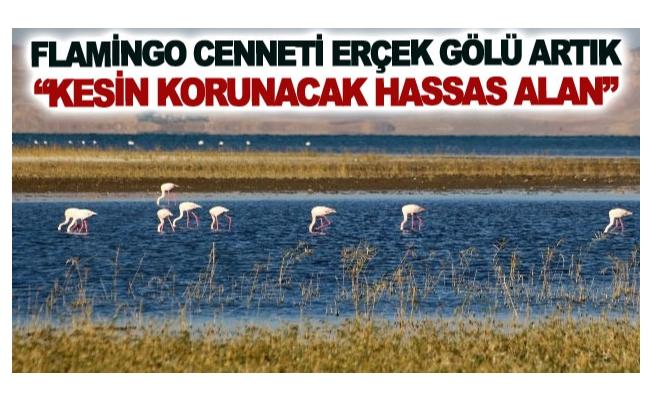 Flamingo cenneti Erçek Gölü artık kesin korunacak hassas alan