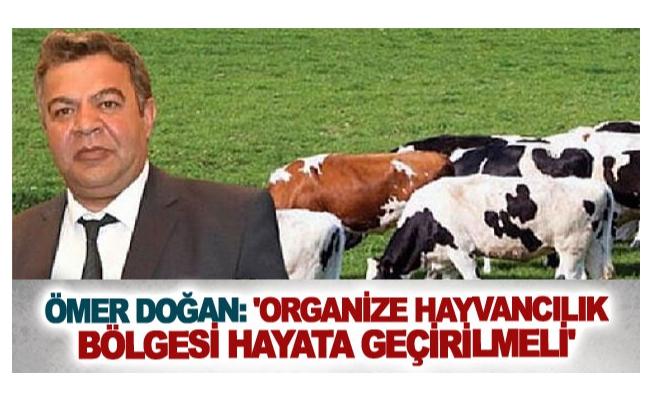 Ömer Doğan: 'Organize Hayvancılık Bölgesi hayata geçirilmeli'