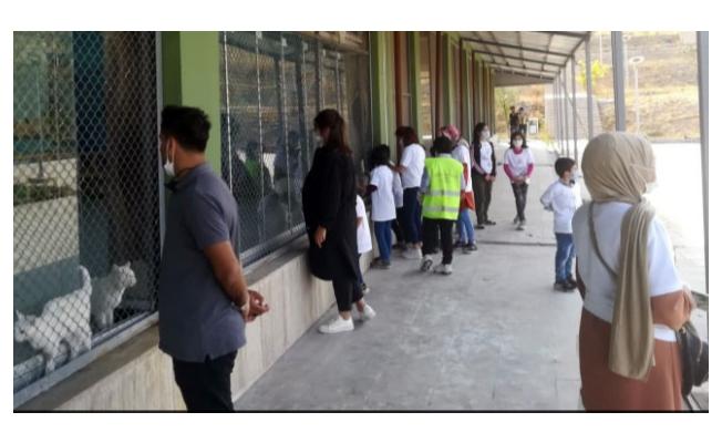 Van Büyükşehir Belediyesi Hayvan Barınağı tam not aldı