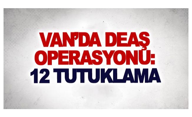 Van'da DEAŞ operasyonu: 12 tutuklama